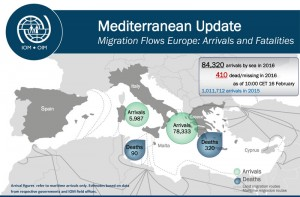 (Infograph courtesy of The International Organization for Migration)