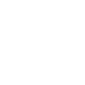 BMW (Wagtail Branding)