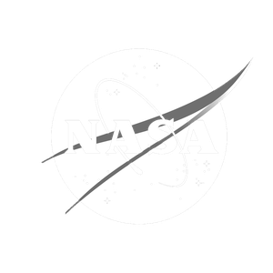 NASA Logo (Wagtail Branding)