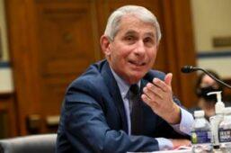 الدكتور أنتوني فاوتشي، كبير خبراء الفيروسات في الولايات المتحدة