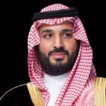 ولي العهد السعودي ووزير الدفاع الياباني يناقشان أمن المرور البحري