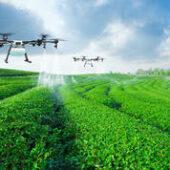 أبوظبي تشكل شركة جديدة لدفع الأمن الغذائي والإنتاج