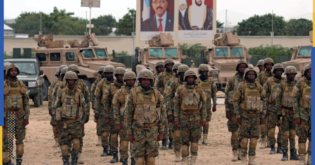 يقوض المكاسب الأمنية.. البرلمان الأوروبي ينتقد التواجد الإماراتي بالقرن الأفريقي