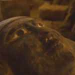 """يكتشف علماء الآثار المصريون 13 تابوتًا مختومًا بسعة 2500 يو ، ويثيرون اكتشافًا إضافيًا """"مثيرًا للغاية"""" قريبًا"""