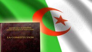 """الأستاذ أحمد ترينيسة: """"بالدستور الجديد ستشارك المعارضة بشفافية في الشأن العام"""""""