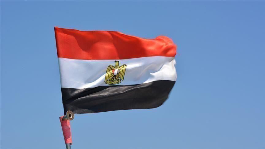 Rights group urges Egypt to release detained activists