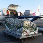 في مواجهة الأزمة الصحية: الخطوط الجوية الجزائرية تحول أربع طائرات إلى شحنة – ألجيري إيكو