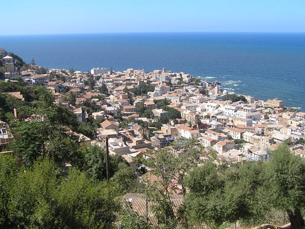 هل انتهى انتظار نقل الرقم الجزائري أخيرًا؟