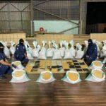 الجمارك السعودية تضبط أكثر من 14 مليون حبة كبتاغون في الدمام