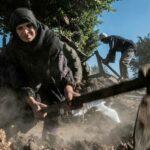 مزارعو مصر على خط المواجهة في معركتهم ضد ندرة المياه