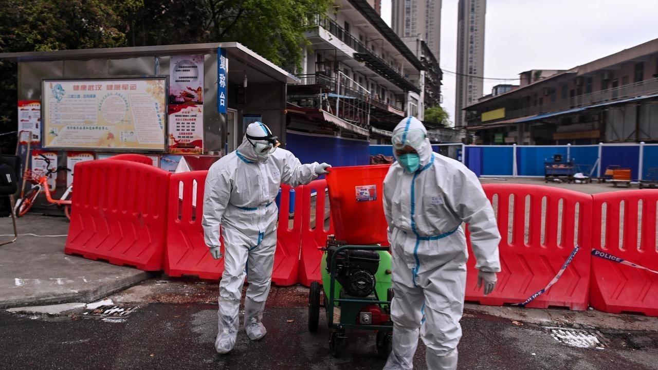 الصين: فريق منظمة الصحة العالمية يبدأ زيارته إلى الصين اعتبارا من الخميس