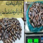 مطار تونس قرطاج/ القبض على شخص وحجز كمية هامّة من مخدّر القنب الهندي
