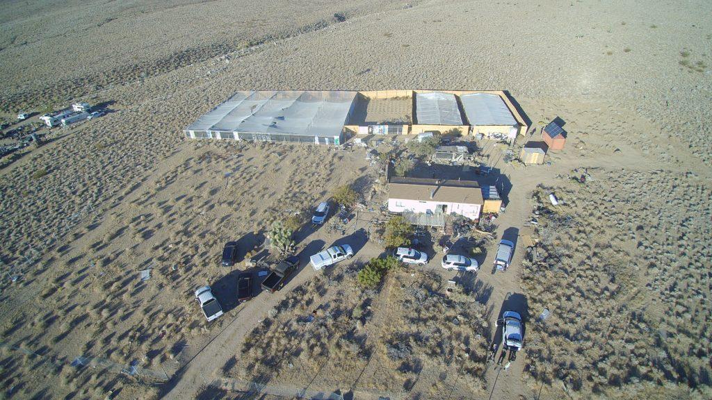 Illegal Marijuana Cultivation Site